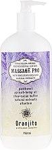 "Parfumuri și produse cosmetice Lapte pentru masaj ""Pina Colada"" - Oranjito Massage Pro Pina Colada Massage Body Milk"