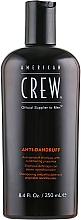 Parfumuri și produse cosmetice Șampon de balansare anti-mătreață pentru scalpul gras - American Crew Anti Dandruff+Sebum Control Shampoo