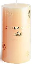 Parfumuri și produse cosmetice Lumânare parfumată, cream, 9x13cm - Artman Winter Glass