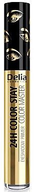 Bază pentru fard de pleoape - Delia 24H Color Stay Color Master