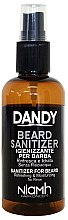 Parfumuri și produse cosmetice Spray dezinfectant pentru barbă și mustăți - Niamh Hairconcept Dandy Beard Sanitizer Refreshing & Moisturizing
