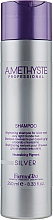 Parfumuri și produse cosmetice Șampon pentru păr blond - Farmavita Amethyste Silver Shampoo