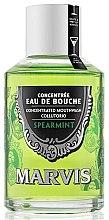 """Parfumuri și produse cosmetice Agent de clătire pentru cavitatea bucală """"Mentă"""" - Marvis Concentrate Spreamint Mouthwash"""