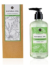 Parfumuri și produse cosmetice Săpun lichid pentru mâini - Accentra Natural Spa Hand Soap