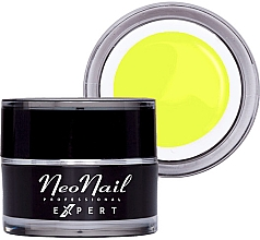Parfumuri și produse cosmetice Гель-краска для ногтей - NeoNail Professonal Expert Paint UV Gel