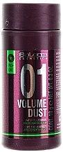 Parfumuri și produse cosmetice Pulbere de păr pentru volum și densitate - Salerm Pro Line Volume Dust 01 Mattifying Powder