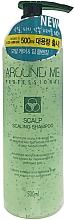 Parfumuri și produse cosmetice Șampon-scrub - Welcos Around Me Scalp Scaling Shampoo