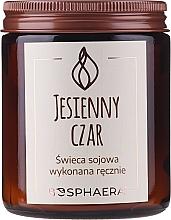 "Parfumuri și produse cosmetice Lumânare aromată din soia ""Autumn Charm"" - Bosphaera Autumn Charm Candle"
