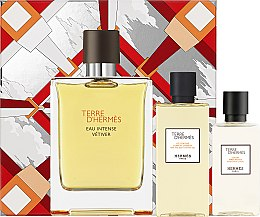 Parfumuri și produse cosmetice Hermes Terre d'Hermes Eau Intense Vetiver Set - Set (edp/100ml + ash/lot/40ml + sh/gel/80ml)