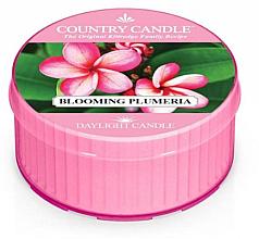 Parfumuri și produse cosmetice Lumânăre aromată - Kringle Candle Blooming Plumeria