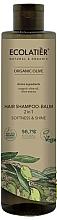 Parfumuri și produse cosmetice Șampon-balsam 2 în 1 - Ecolatier Organic Olive Hair-Shampoo Balm