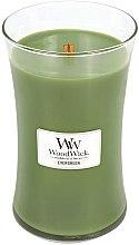 Parfumuri și produse cosmetice Lumânare aromată cu suport din sticlă - WoodWick Hourglass Candle Evergreen