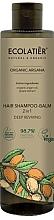 Parfumuri și produse cosmetice Șampon-balsam 2 în 1 - Ecolatier Organic Argana Hair-Shampoo Balm