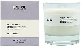 Parfumuri și produse cosmetice Lumânare aromată - Ambientair Lab Co. Amber & Clove