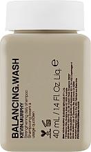 Parfumuri și produse cosmetice Șampon de fiecare zi pentru păr vopsit - Kevin.Murphy Balancing.Wash (mini)