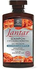 Parfumuri și produse cosmetice Șampon pentru păr uscat și fragil cu extract de chihlimbar - Farmona Jantar Moisturizing Shampoo