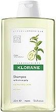 Parfumuri și produse cosmetice Șampon de păr - Klorane Shampoo With Citrus Pulp