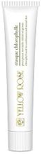 Parfumuri și produse cosmetice Mască pe bază de clorofilă pentru față - Yellow Rose Masque Chlorophylle