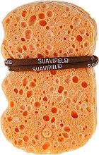 Parfumuri și produse cosmetice Burete de baie - Suavipiel Natural Vegetal Sponge