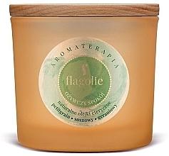 "Parfumuri și produse cosmetice Lumânăre aromată, în pahar ""Refreshing"" - Flagolie Fragranced Candle Refreshing Peace"