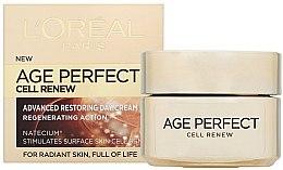 Parfumuri și produse cosmetice Cremă de zi revitalizantă - L'Oreal Paris Age Perfect Cell Renew Day Cream