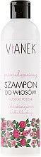 Parfumuri și produse cosmetice Șampon pentru păr antimătreață - Vianek Anti-Dandruff Shampoo