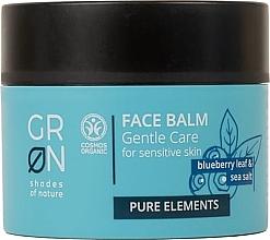Parfumuri și produse cosmetice Balsam pentru față - GRN Pure Elements Blueberry & Sea Salt Face Balm