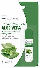 """Parfumuri și produse cosmetice Balsam de buze """"Aloe Vera"""" - IDC Institute Lip Balm Aloe Vera"""