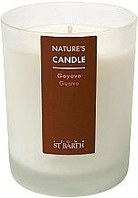Parfumuri și produse cosmetice Lumânare parfumată - Ligne St Barth Body