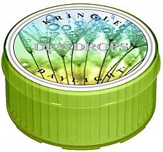 Parfumuri și produse cosmetice Lumânare aromată - Kringle Candle Dewdrops Daylight