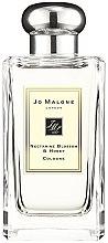 Parfumuri și produse cosmetice Jo Malone Nectarine Blossom and Honey - Apă de colonie (tester cu capac)