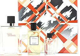 Parfumuri și produse cosmetice Hermes Terre d'Hermes - Set (edt/100ml + sh/gel/80ml + edt/12,5ml)