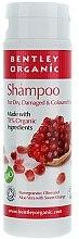 Parfumuri și produse cosmetice Șampon pentru păr uscat și deteriorat - Bentley Organic Shampoo For Dry & Damaged Hair