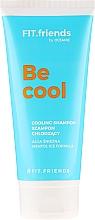 Parfumuri și produse cosmetice Șampon - AA Fit.Friends Cooling Shampoo