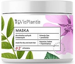Parfumuri și produse cosmetice Mască pentru păr uscat - Vis Plantis Hair Mask