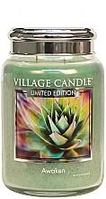 Parfumuri și produse cosmetice Ароматическая свеча в банке - Village Candle Awaken