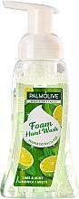 Parfumuri și produse cosmetice Săpun lichid - Palmolive Magic Softness Foaming Handwash Lime & Mint