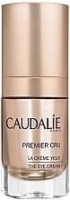 """Parfumuri și produse cosmetice Cremă pentru ochi """"Protecție globală"""" - Caudalie Premier Cru Eye Cream"""