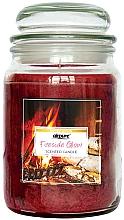 """Parfumuri și produse cosmetice Lumânăre parfumată """"Șemineu"""" - Airpure Jar Scented Candle Fireside Glow"""