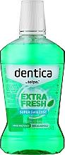 Parfumuri și produse cosmetice Apă de gură - Dentica Dental Protection Mint Fresh