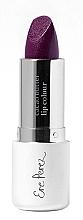 Parfumuri și produse cosmetice Ruj - Ere Perez Cacao Lip Colour