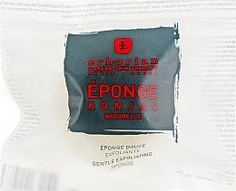 Parfumuri și produse cosmetice Burete delicat exfoliant pentru față și corp - Erborian Konjac Sponge
