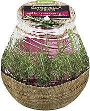 """Parfumuri și produse cosmetice Lumânare aromatică în borcan """"Citronella Garden Rosemary"""", 94/91 mm - Bolsius Candle"""
