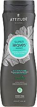 Parfumuri și produse cosmetice Șampon-gel de duș - Attitude Super Leaves Natural Shampoo & Body Wash 2-in-1 Scalp Care