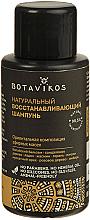 Parfumuri și produse cosmetice Șampon de păr - Botavikos Natural Repairing Shampoo (mini)