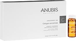 Parfumuri și produse cosmetice Concentrat cu colagen pentru față - Anubis Collagen Concentrate Line