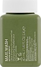 Parfumuri și produse cosmetice Șampon detoxifiant pentru păr vopsit - Kevin.Murphy Maxi.Wash Shampoo (mini)