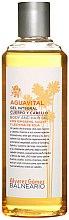 Parfumuri și produse cosmetice Alvarez Gomez Balneario Aguavital - Gel de duș