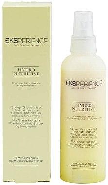 Spray nutritiv pentru păr - Revlon Professional Eksperience Hydro Nutritive Spray — Imagine N1