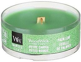 Parfumuri și produse cosmetice Lumânare aromată în suport de sticlă - Woodwick Petite Candle Palm Leaf